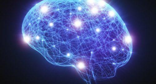 L'amore al tempo delle neuroscienze