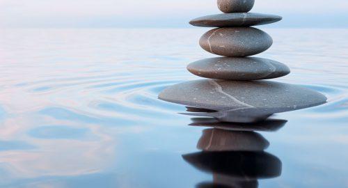 Mindfullness e autoregolazione emotiva